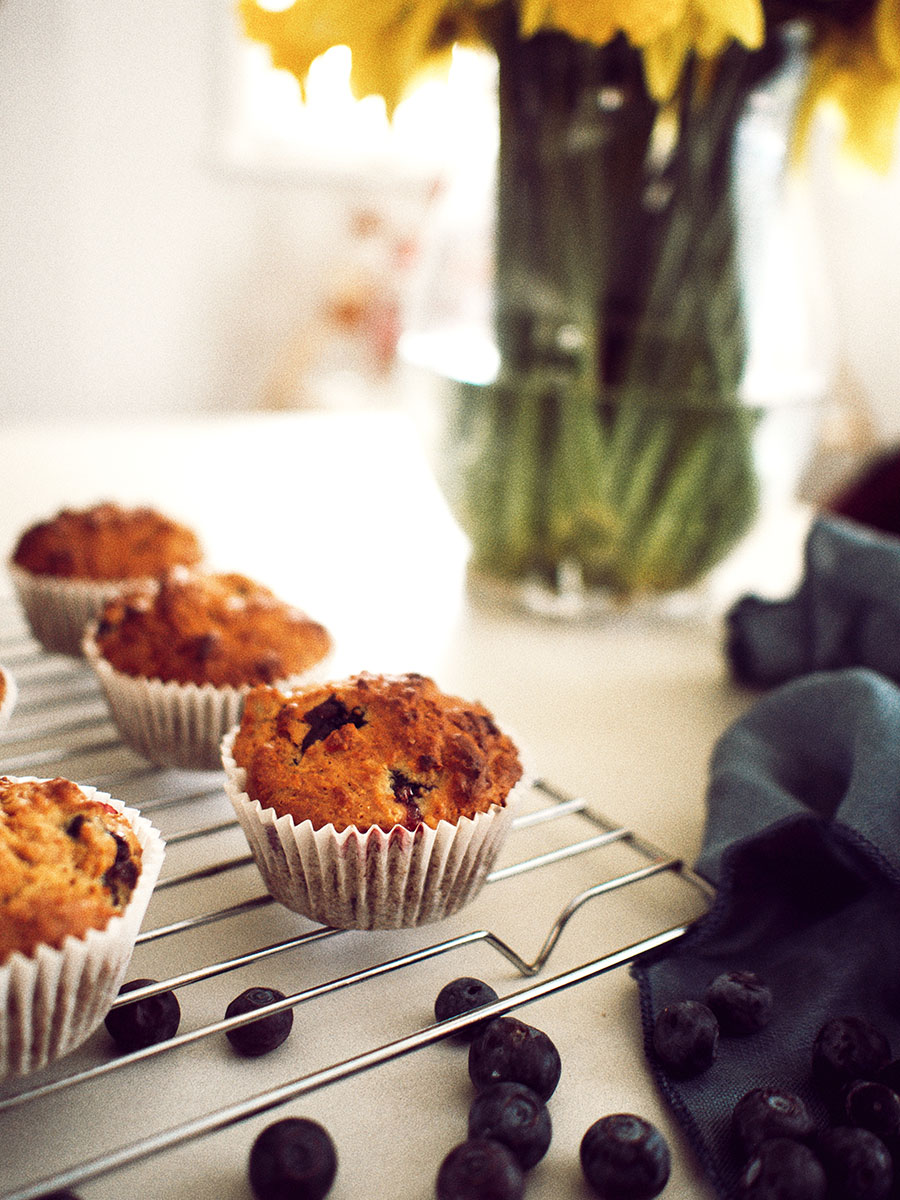 blueberry-oat-muffins-healthy